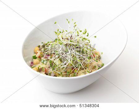 Gourmet Vegan
