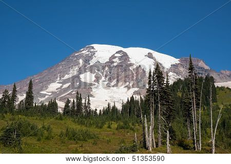 Mount Rainier In The Summer