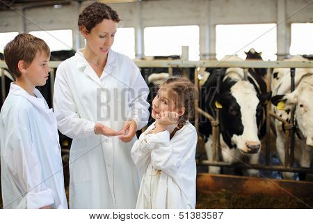 Mother, son and little daughter talk in stall with many cows.