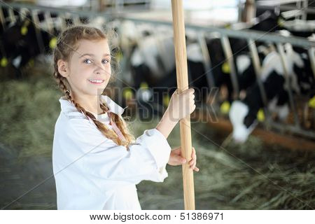 Lilttle cute girl in white with broom stands near stall with calves in farm.
