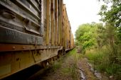 pic of freightliner  - A long line of boxcars on a train track - JPG