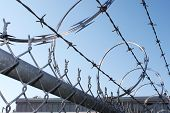 picture of razor  - Barbwire and razor wire fence - JPG