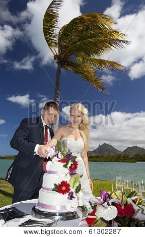 Beach Wedding Ceremony With Cake In Mauritius