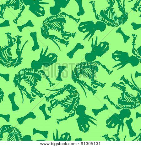 Triceratops Bones.