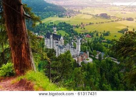 Neuschwanstein Top View And Castle