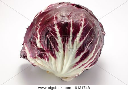 Red Chicory From Chioggia