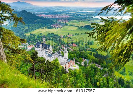 Neuschwanstein From Forest Above