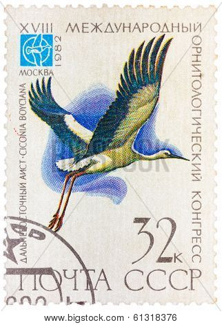 Stamp Printed In Ussr (russia) Shows A Bird Ciconia Boyciana With The Inscription And Name Of Series