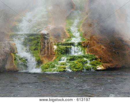 Green Moss At Thermal Falls