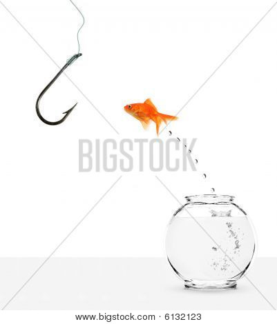 Goldfish Jumping Out Of Bowl Towards Empty Hook
