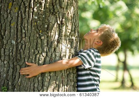 Little boy hugging a tree. Concept: care of nature