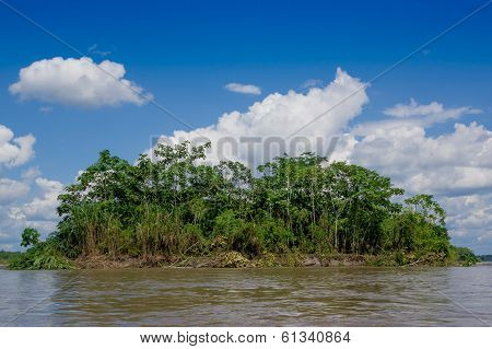Tropical Rainforest  at Amazonas, South America