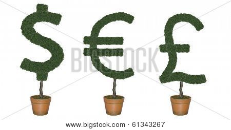 Topiary trees in shape of world currency symbols