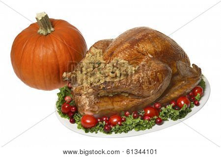 Thanksgiving turkey dinner