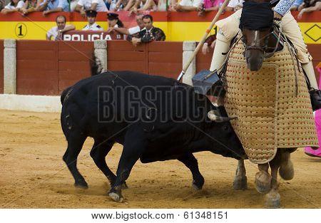 Bulll Attack