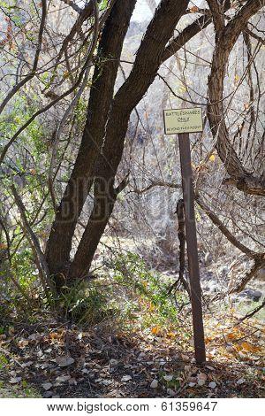 Rattlesnakes Warning