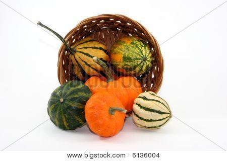 Fall Pumpkin Basket