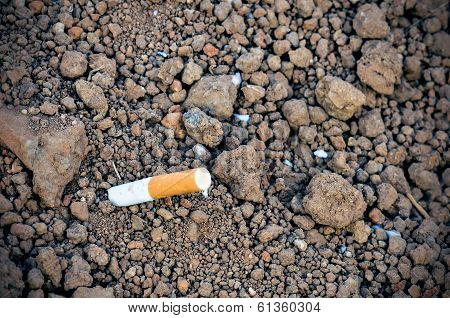 Cigarette Butt Discarded Outdoors