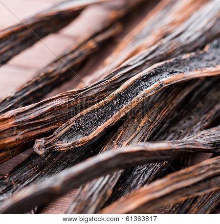 vanilla pods on wooden background. macro.