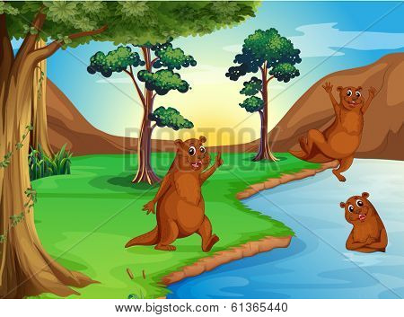 Illustration of the sealions playing at the river