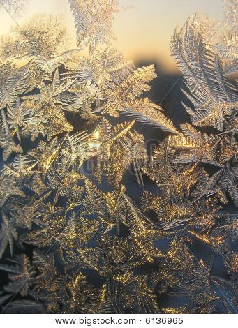 The pattern left on glass a frost