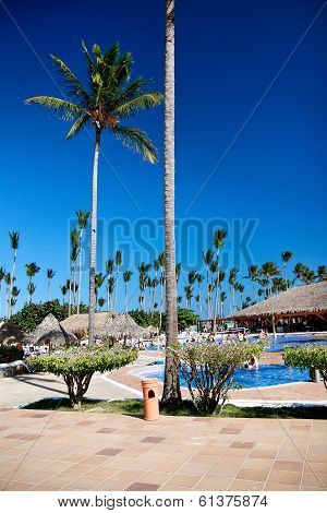 Luxury Tropical Hotel Resort