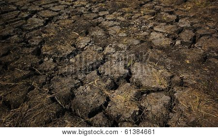 Dry Cracked Earth As Background