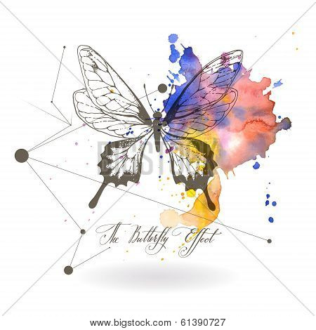 Abstract background with the image of a butterfly. The Butterfly Effect - a calligraphic inscription