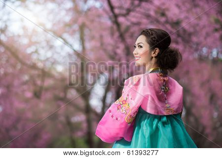 Hanbok: The Traditional Korean Dress And Beautiful Asian Girl With Sakura