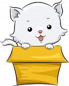 Illustration of a Cute White Cat Sitting in an Adoption Box