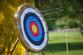 stock photo of diligent  - Arrows missed target concept of fail diligent - JPG