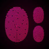 Types of fingerprint patterns. Vector.