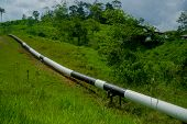Постер, плакат: Trans Andean oil pipeline Ecuador it links oilfields in the Amazon