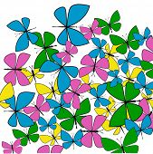 Pretty spring summer butterflies