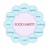 pic of e coli  - Food Safety concept circular diagram in pink and blue with great terms such as public agency bacteria and more - JPG