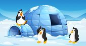 stock photo of igloo  - Illustration of the three penguins near an igloo - JPG