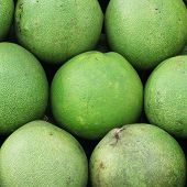 image of pomelo  - photo of the pomelo on market tray - JPG