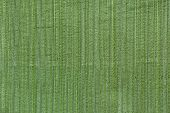 green line tone wall coverings