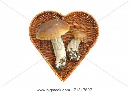 Two Cep Mushroom In Heart Form Basket Isolated