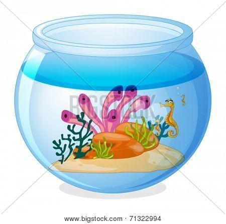 Illustration of a fish tank and seahorses