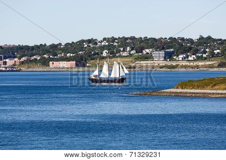 Black Sailboat With White Sails