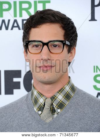 LOS ANGELES - MAR 01:  Andy Samberg arrives to the Film Independent Spirit Awards 2014  on March 01, 2014 in Santa Monica, CA.