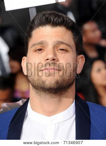 LOS ANGELES - APR 13:  Jerry Ferrera arrives to the 2014 MTV Movie Awards  on April 13, 2014 in Los Angeles, CA.