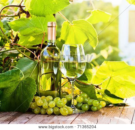 Green Grape And White Wine In Vineyard