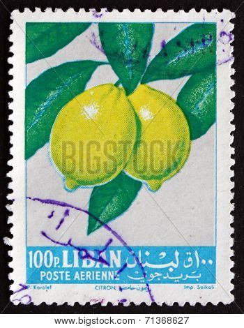 Postage Stamp Lebanon 1962 Lemons, Fruit Tree