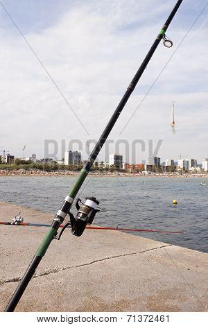 Fishing Rod In Barcelona