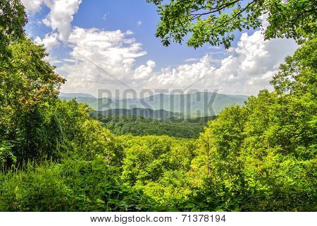Smoky Mountain Horizon
