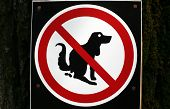 image of poop  - a Pooping dog sign - JPG
