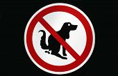 pic of dog poop  - a Pooping dog sign - JPG