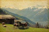 image of hamlet  - Small farm in Swiss alps - JPG